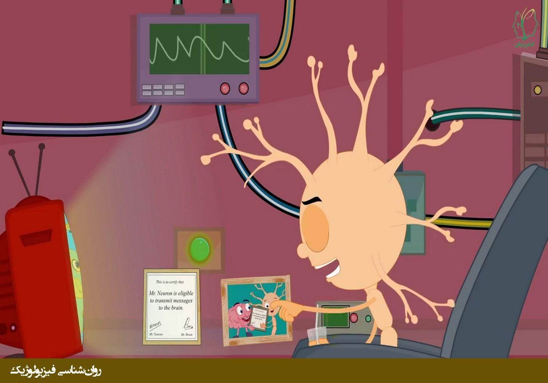 ساختار نورون