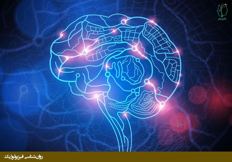 توانایی مغز انسان