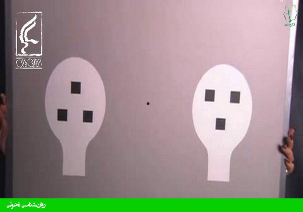 تشخیص چهره انسان در نوباوگان