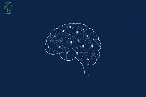 آیا مغز تودهای از واحدهای نورون هم شکل با تواناییهای حافظهای یکسان است؟