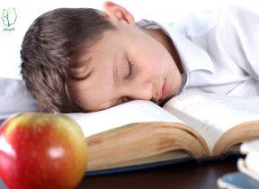 بازگشت به مدرسه، بازگشت به خواب