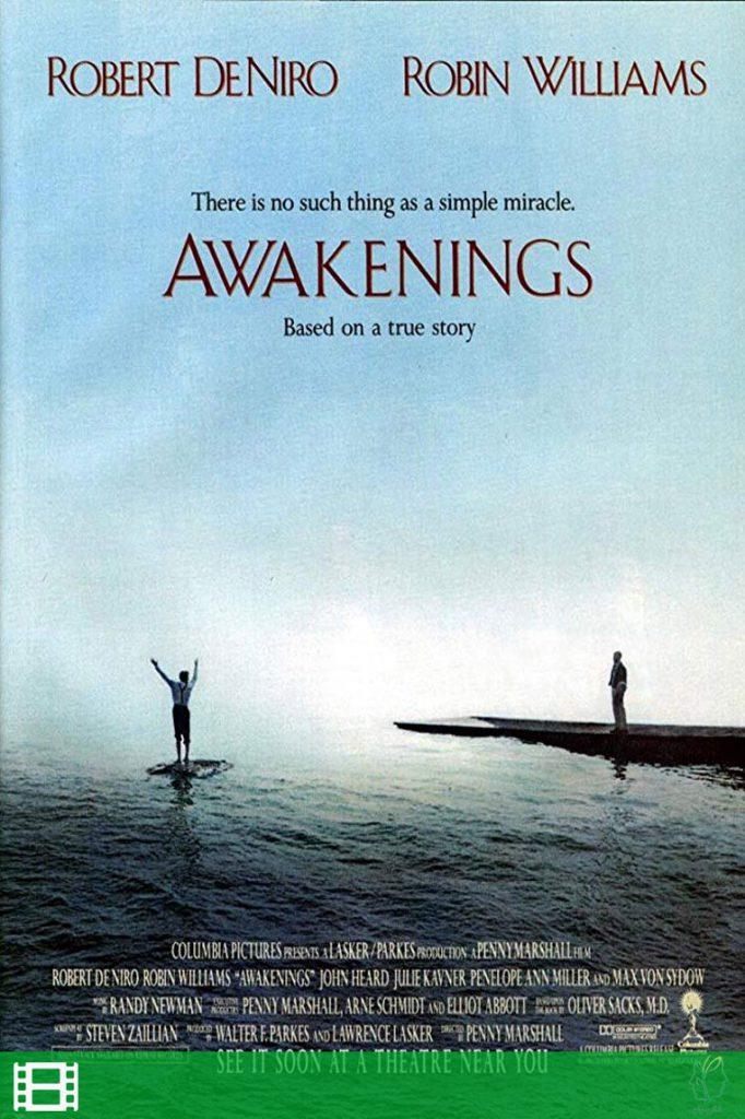 پوستر فیلم بیدارشدگان (Awakening)