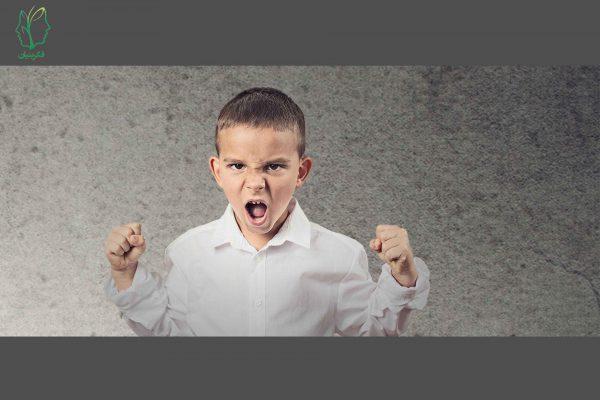 عوامل و نشانه های لجبازی در کودکان