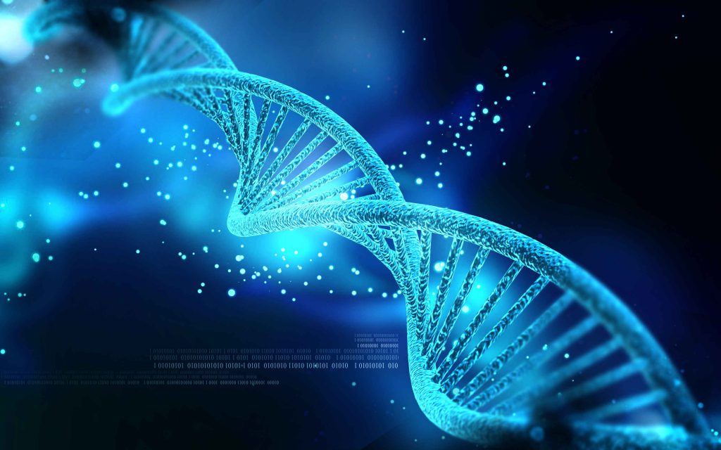 سفر DNA - ضد نژادپرستی