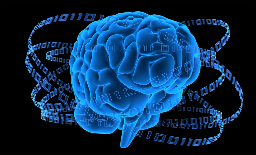 عقبماندگی ذهنی و مداخلات کاردرمانی