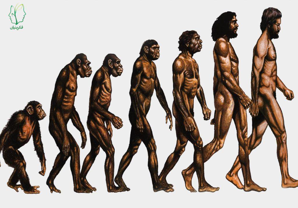 نظریه بقای اَنسَب چارلز داروین و تاثیر آن بر نظریههای رشد و تحول