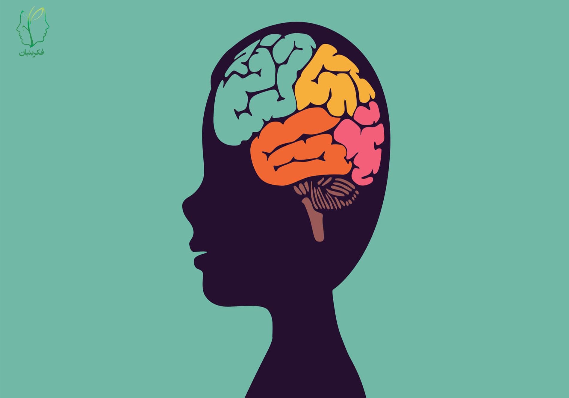 رشد کودکان از لحاظ روان شناختی